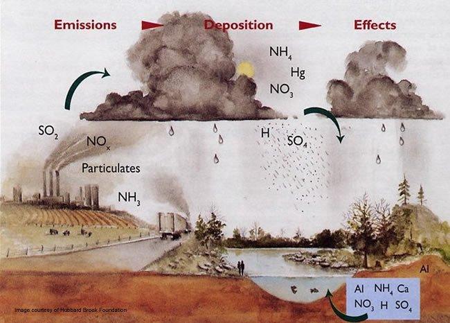 Ref4 Com Acid rain L195 باران اسیدی چیست؟ باران اسیدی
